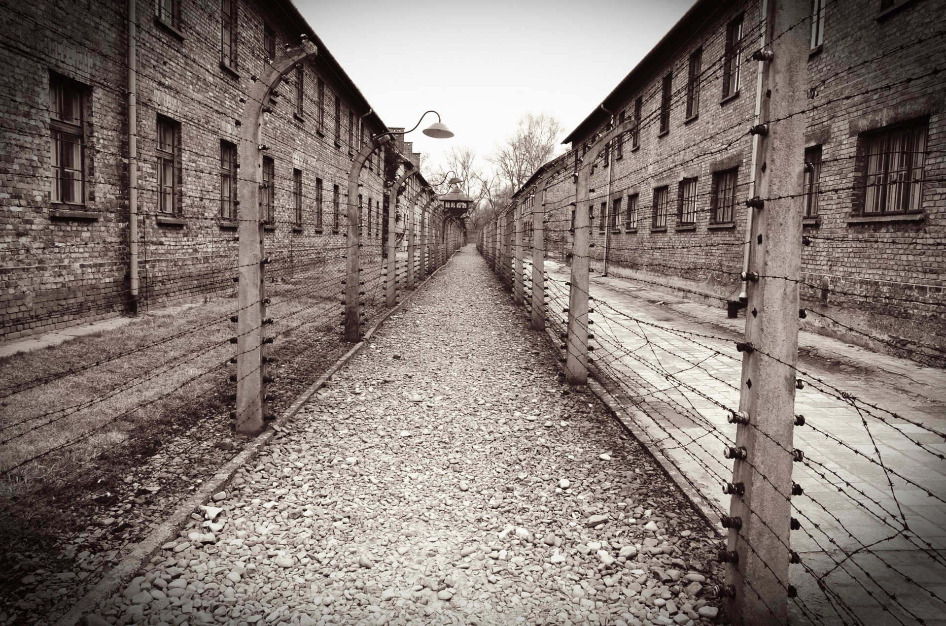 Jewish Tours Of Concentration Camps