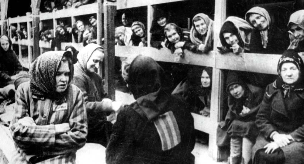 Auschwitz Prisoner