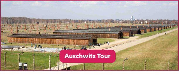 Auschwitz Tour DC