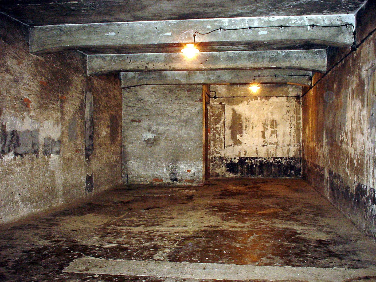 Holocaust Pictures Gas Chambers | www.pixshark.com ...