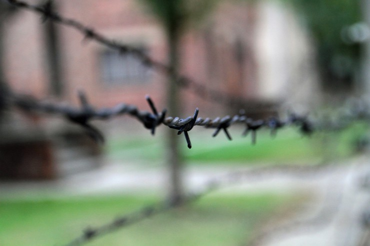 auschwitz-today-fences