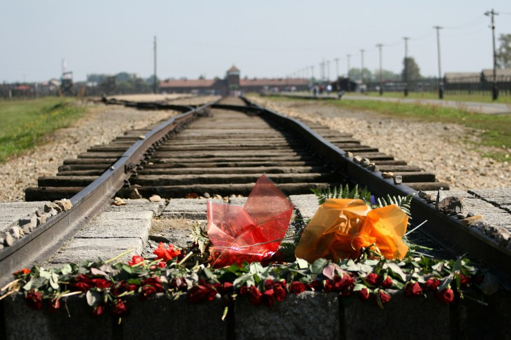 auschwitz-today-flowers