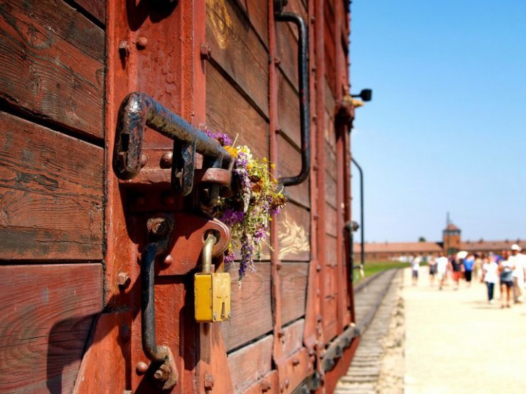 auschwitz-photos-flowers
