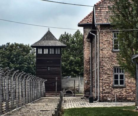 Auschwitz Tour 2
