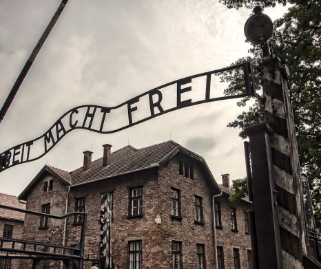 Auschwitz - Birkenau Guided Tour (transport with shared minibus)