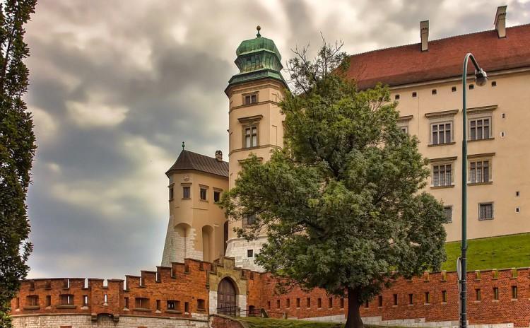 Wawel-castle ticket